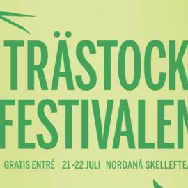 Att göra under NET-helgen i Skeå